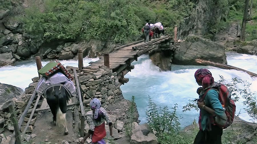 Trekkers crossing the traditional wooden bridge during Dolpo Trekking